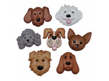 Hunde-Köpfe